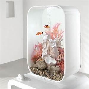 Die Besten Aquarien : die besten 25 biorb aquarium ideen auf pinterest ~ Lizthompson.info Haus und Dekorationen