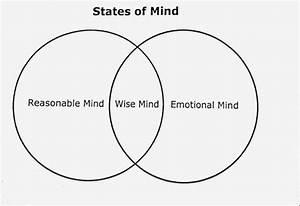 Wise Mind  U2014 Nina Barlevy  Psy D