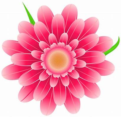 Pink Clipart Flower Flowers Transparent Clipground
