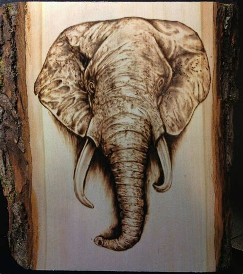 elephant wood burning pyrography scrimshaw engraving