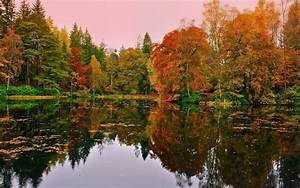 Lake, Nature, Fall, Wallpapers, Hd, Desktop, And, Mobile