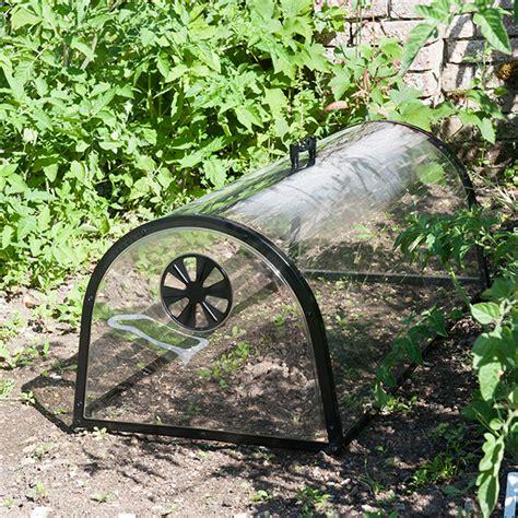 Kitchen Garden Equipments by Buy Kitchen Garden Cloche Delivery By Waitrose Garden In