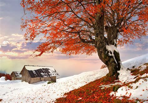 Autumn And Winter Together  5770 X 3995 Other