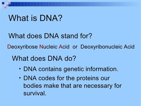 what do the letters dna stand for dna forensic