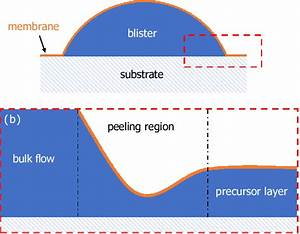 A  Schematic Diagram Of A Peeling Flow For A Blister Of