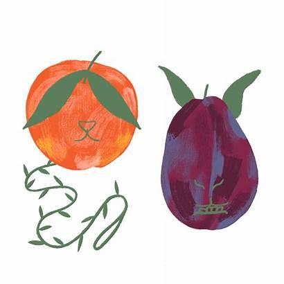 Plum Fruit Taste Hamantaschen Plums Own