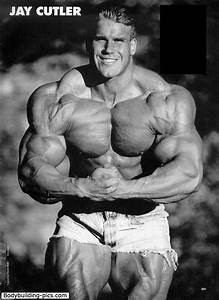 1055 best images about Bodybuilding on Pinterest