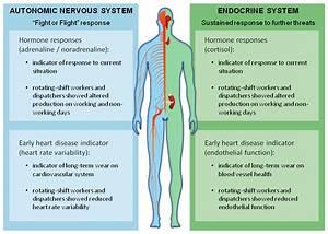 Neurosécréteur : définition de NEUROSÉCRÉTEUR, -TRICE , , adj.