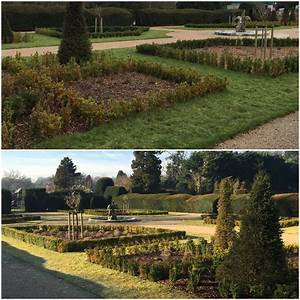 Transformation Tuesday!! - Hislop & Co Horticulture
