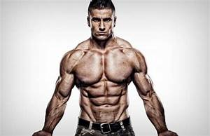 Best Muscle Building Exercises