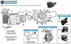 Hayward Super Ii Pump Parts