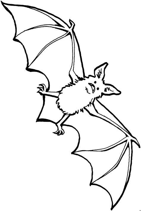 aengstliche fledermaus  ausmalbild malvorlage tiere