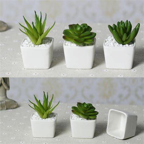 decorative pots for indoor plants planters extraordinary indoor decorative plant pots decorative planters for indoor plants