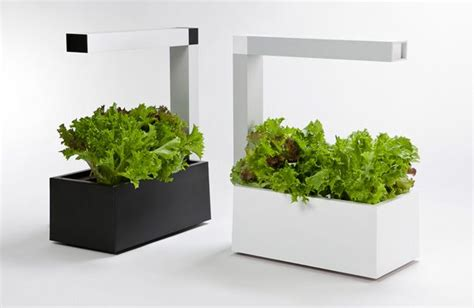 grow plants indoors archives bc net