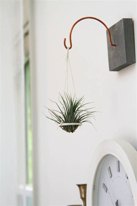 suspended air plant holder hanging plant disc unique handmade home decor living art
