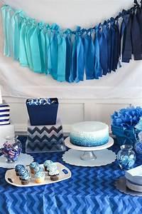 25+ best ideas about Blue Party Decorations on Pinterest