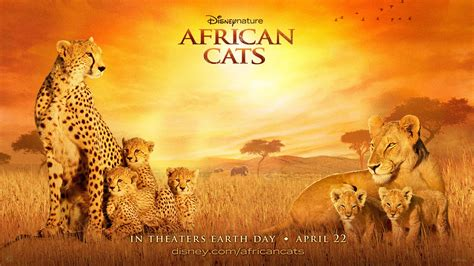 African Cats 2011 Nature Documentary Film By Disneynature