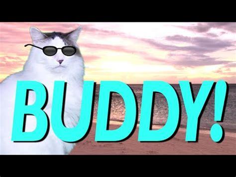 happy birthday buddy epic cat happy birthday song youtube