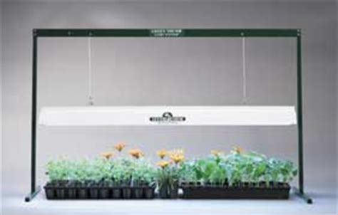 fluorescent grow lights at ladybug indoor gardens