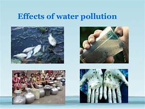 16 Water Pollution Facts - Types, Causes, Effects, Prevention