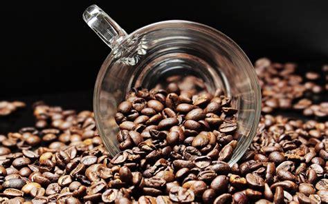 How Does Caffeine Work? | Owlcation