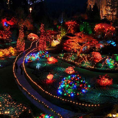 christmas magic   butchart gardens  royal scot