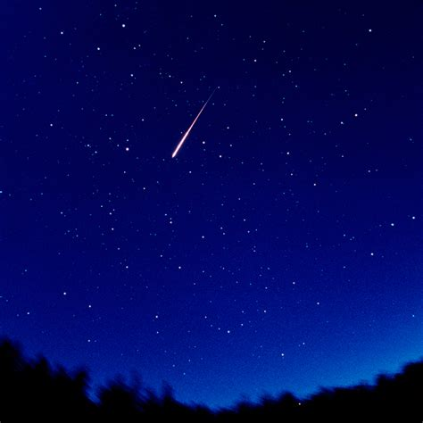 perseid meteor shower cosmos