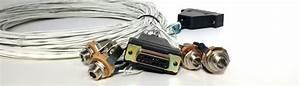 Radio - Wiring Harnesses