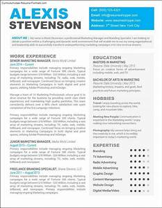 creative professional resume templates free samples With creative resume format