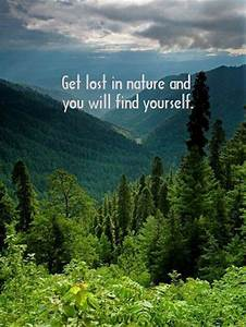 Get lost in nature and you will find yourself. | Nature ...
