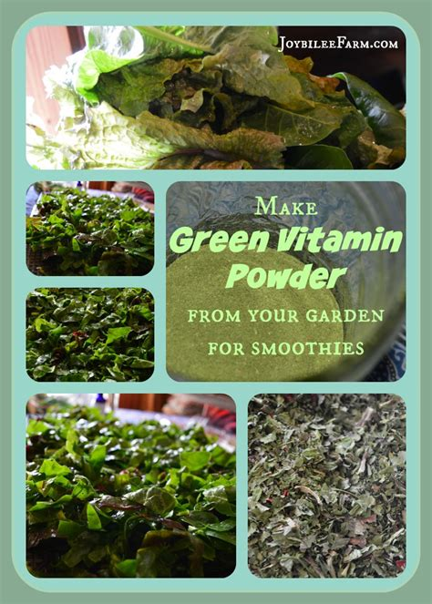 greens in powder form diy greens supplement powder for smoothies