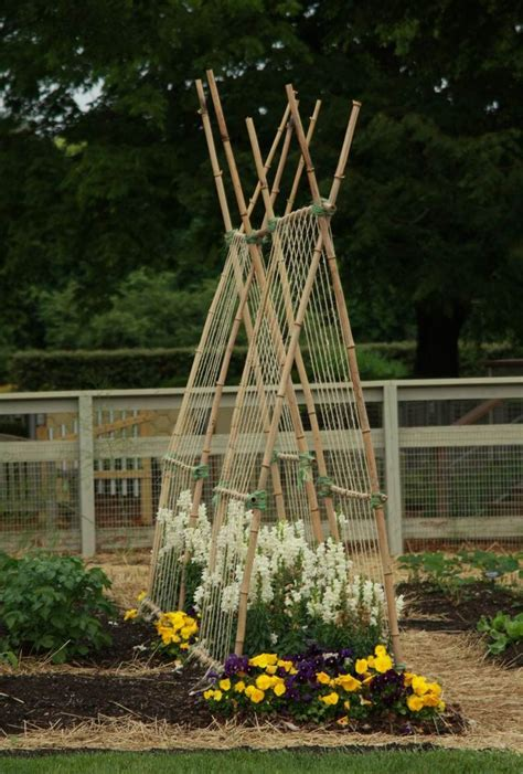 garden trellis ideas trellis