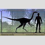 Jaxartosaurus | 618 x 366 jpeg 169kB