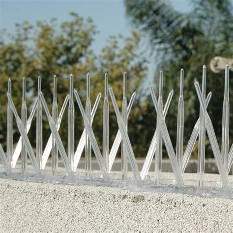 plastic bird spikes bird spikes plastic bird