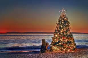 panoramio photo of christmas tree sunset at crystal cove state park newport beach california