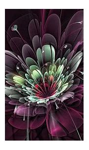Flower Burst Background Fractal HD Abstract Wallpapers ...