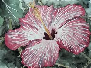 Derek Mccrea Artwork: Hibiscus flower Watercolor poster ...