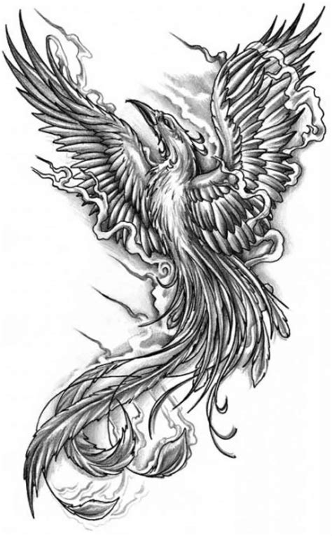 Black And Grey Flying Phoenix Tattoo Design
