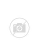 Heart With Wings Tattoos