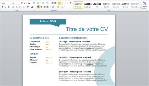 Exemple De Curriculum Vitae 2015 by Cv Word 2015