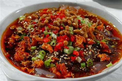 cuisine ot opinions on sichuan cuisine