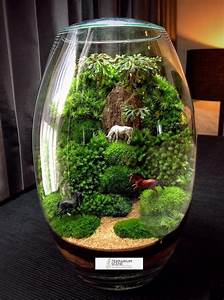 Bonsai Im Glas : pin von hartmut ditzel auf garten ~ Eleganceandgraceweddings.com Haus und Dekorationen