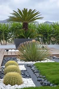 Ideas para diseñar jardines deserticos (11) Curso de Organizacion del hogar y Decoracion de