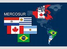 Teamsters Raise Concerns on CanadaMercosur Trade Talks