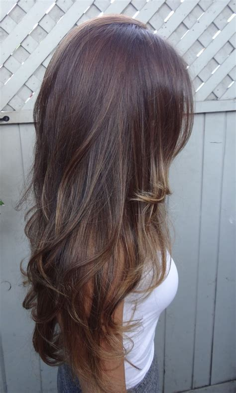 Hairstyles Brown With Highlights by Hair Styles For Brown Hair