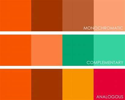 Orange Colour Pantone 1655 Month Colours Complement