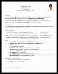 Ssas Developer Resume Sle by Sas Sle Resume Programmer 28 Images Sas Programmer