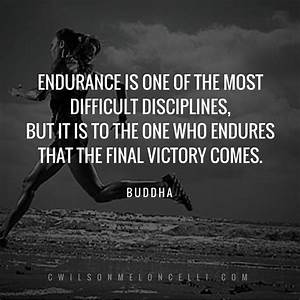 Best 25+ Endura... Endurance Quotes