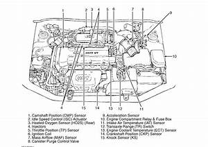 Hyundai Accent Fuel Filter Location Pictures