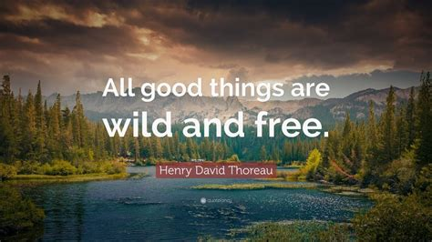 top  henry david thoreau quotes youtube